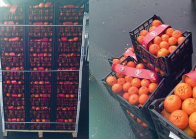 Lieferung von Orangen
